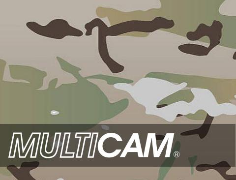 MultCam